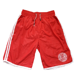 D&G nylon shorts